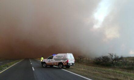 Declaran la emergencia ambiental por las quemas de pastizales en el Delta del Paraná