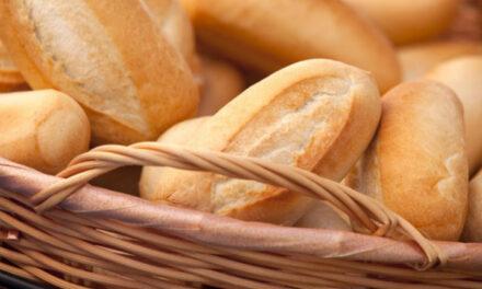 Anticipan que el pan aumentará hasta el 10%