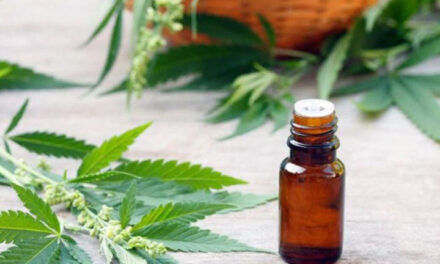 Consejo consultivo consensuó los principales aspectos para la nueva reglamentación de la ley de uso medicinal de cannabis