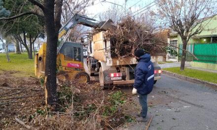 Abella pidió a los vecinos colaborar con la limpieza de la ciudad
