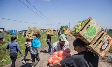"""Con aval de Massa y Máximo Kirchner, presentan un proyecto de """"Acceso a la Tierra"""" para darles a pequeños productores accesos a parcelas"""