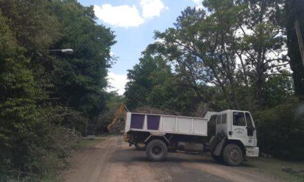 Continúan los trabajos de mantenimiento integral en barrios de Los Cardales