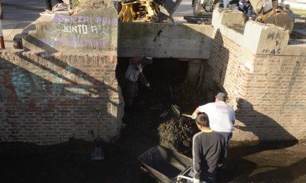 Se realizó un importante operativo de limpieza en Berutti y Alem