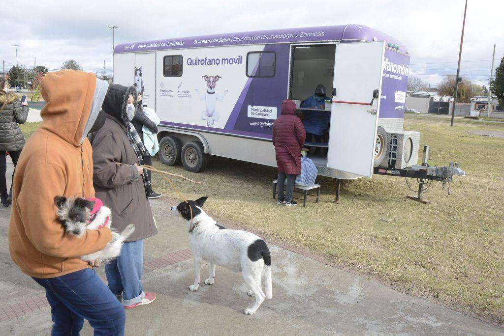 Ya se aplicaron 4.100 vacunas antirrábicas gratuitas a perros y gatos